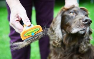 furminator børste til hund og kat