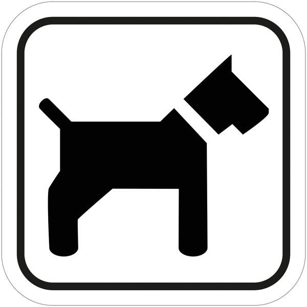 hund tilladt uden snor