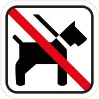 hunde er ikke tilladt