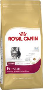 Kitten < 12 mdr Persian