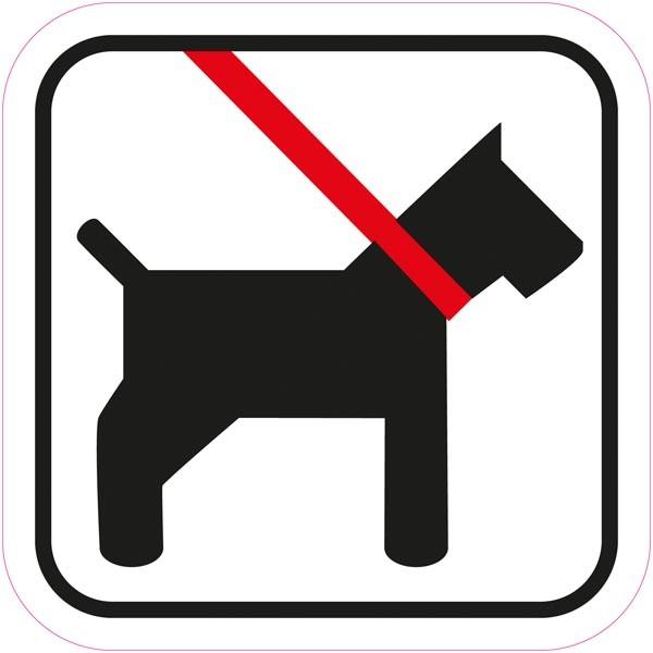 hund skal holdes i snor
